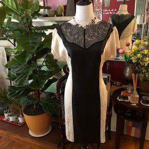 Lovely Paneled Brocade Lace Sheath Dress